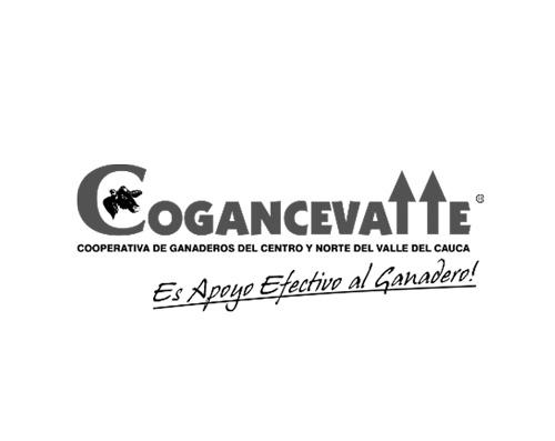 COGANCEVALLE