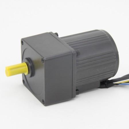 250W-Induction-motor